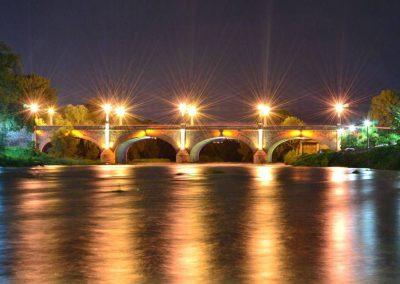 Puente de Lagos